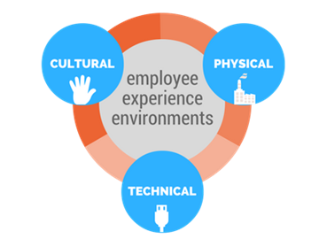 Employee Experience First